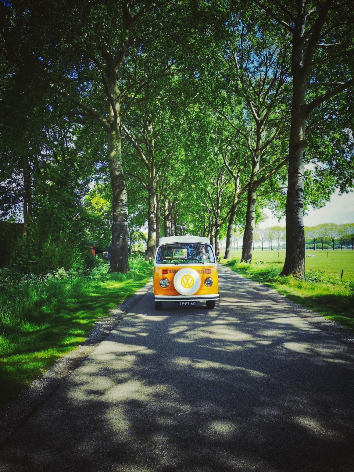De Volkswagenbus Mr. Orange6