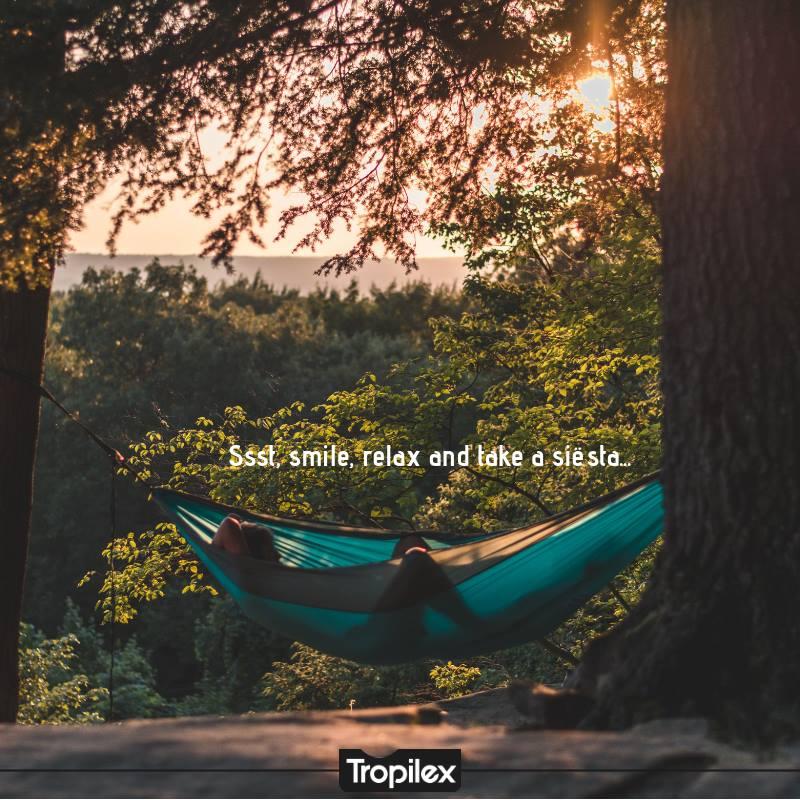 Tropilex6