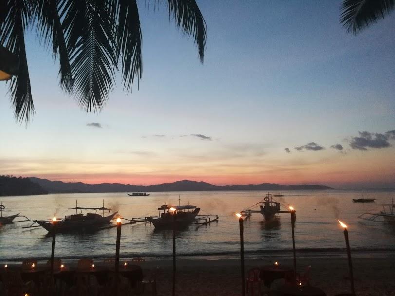 foto vanuit coconut tree