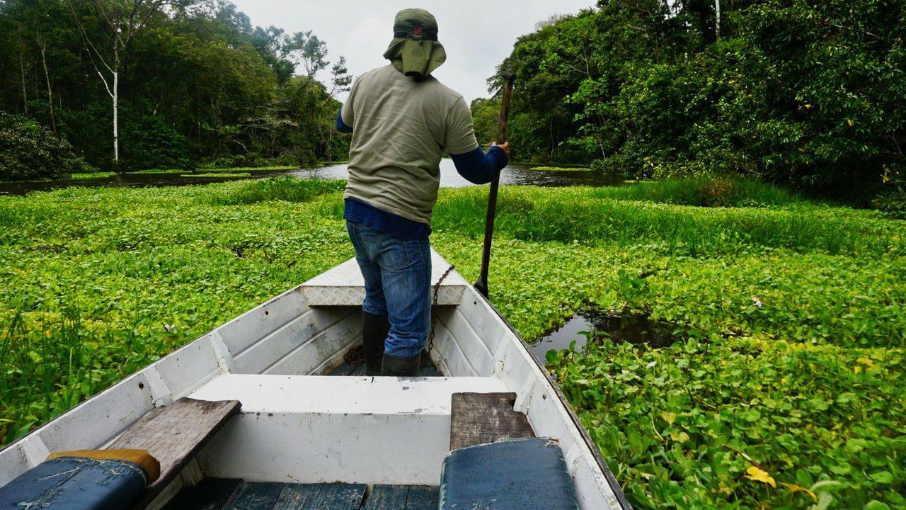 Iquitos Peru8