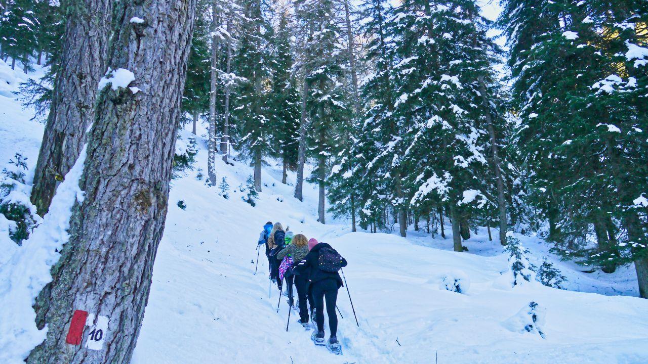 Zuid Tirol Italie Wintersport58