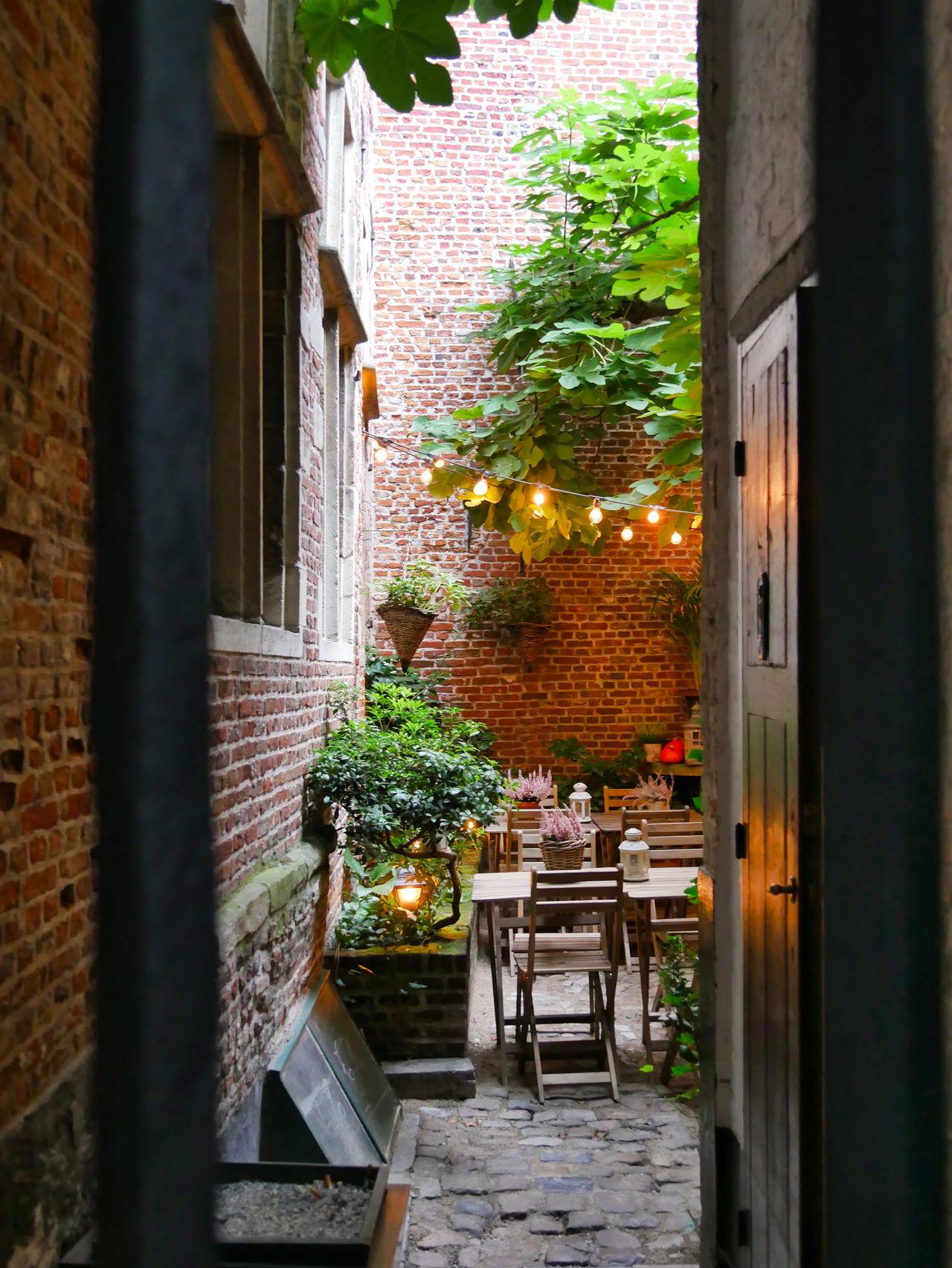 Antwerpen restaurant t Hofke2