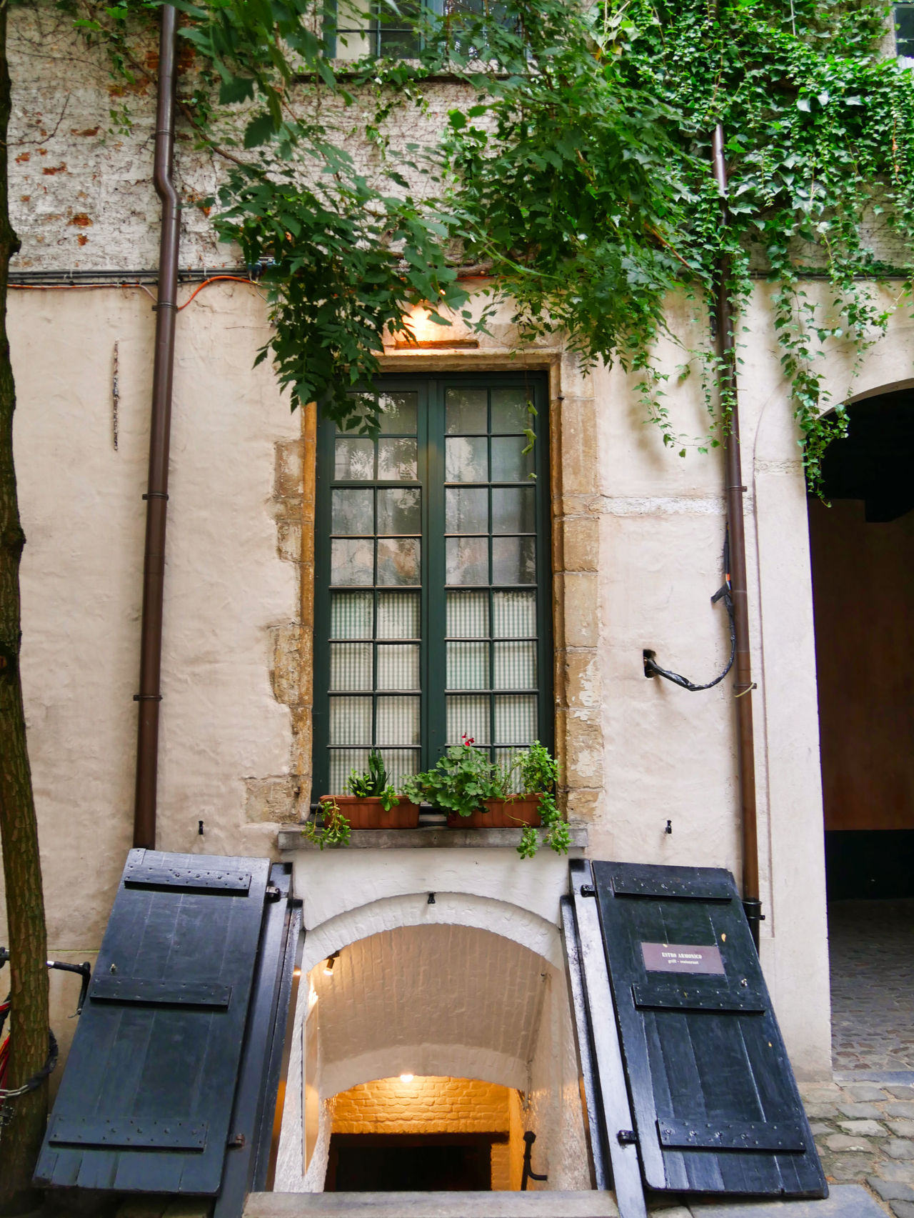 Antwerpen restaurant t Hofke3
