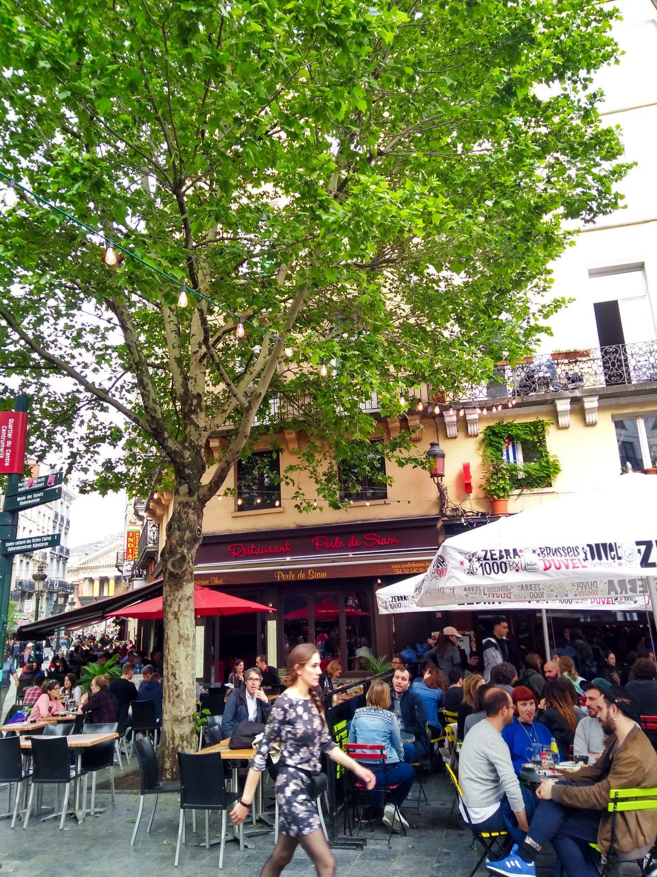 Brussel gezellige wijk6