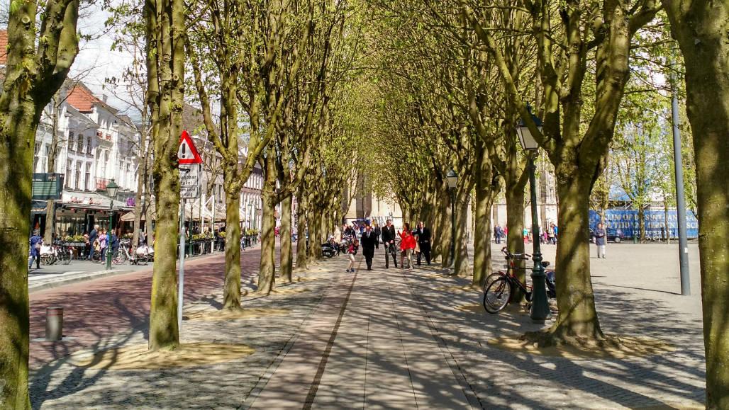 Den Bosch shoppen stedentrip