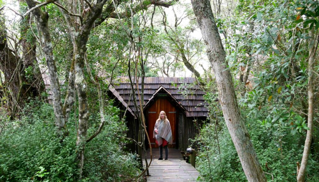 Knysna Phantom Eco Reserve Treehouse