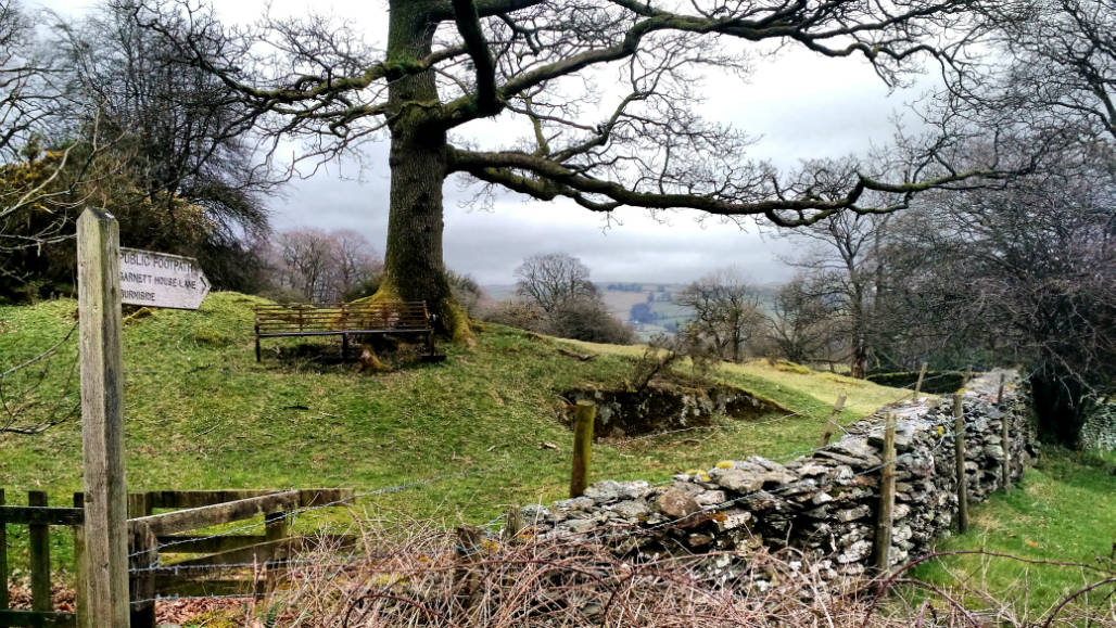 Lake District hiking trails