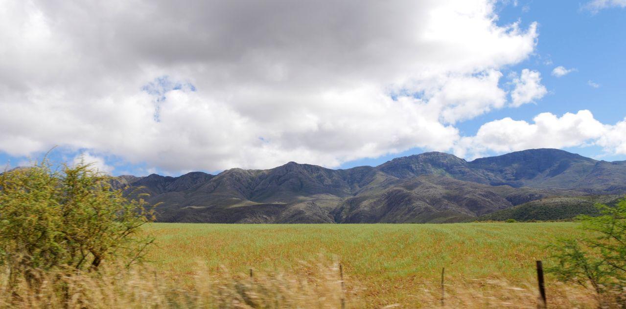 Montagu Route62 view