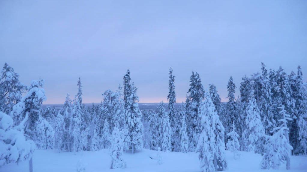 snow landscape Rovaniemi Lapland