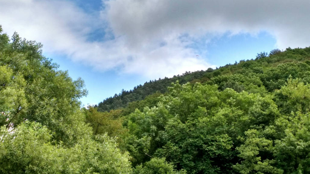 Ardennen mooiste natuurparken