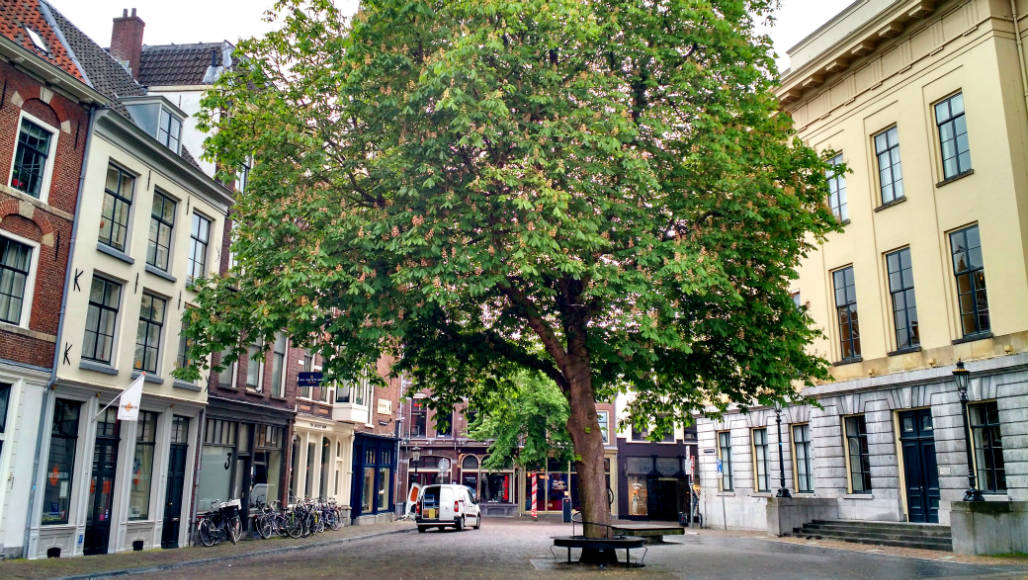 Utrecht bezienswaardigheden