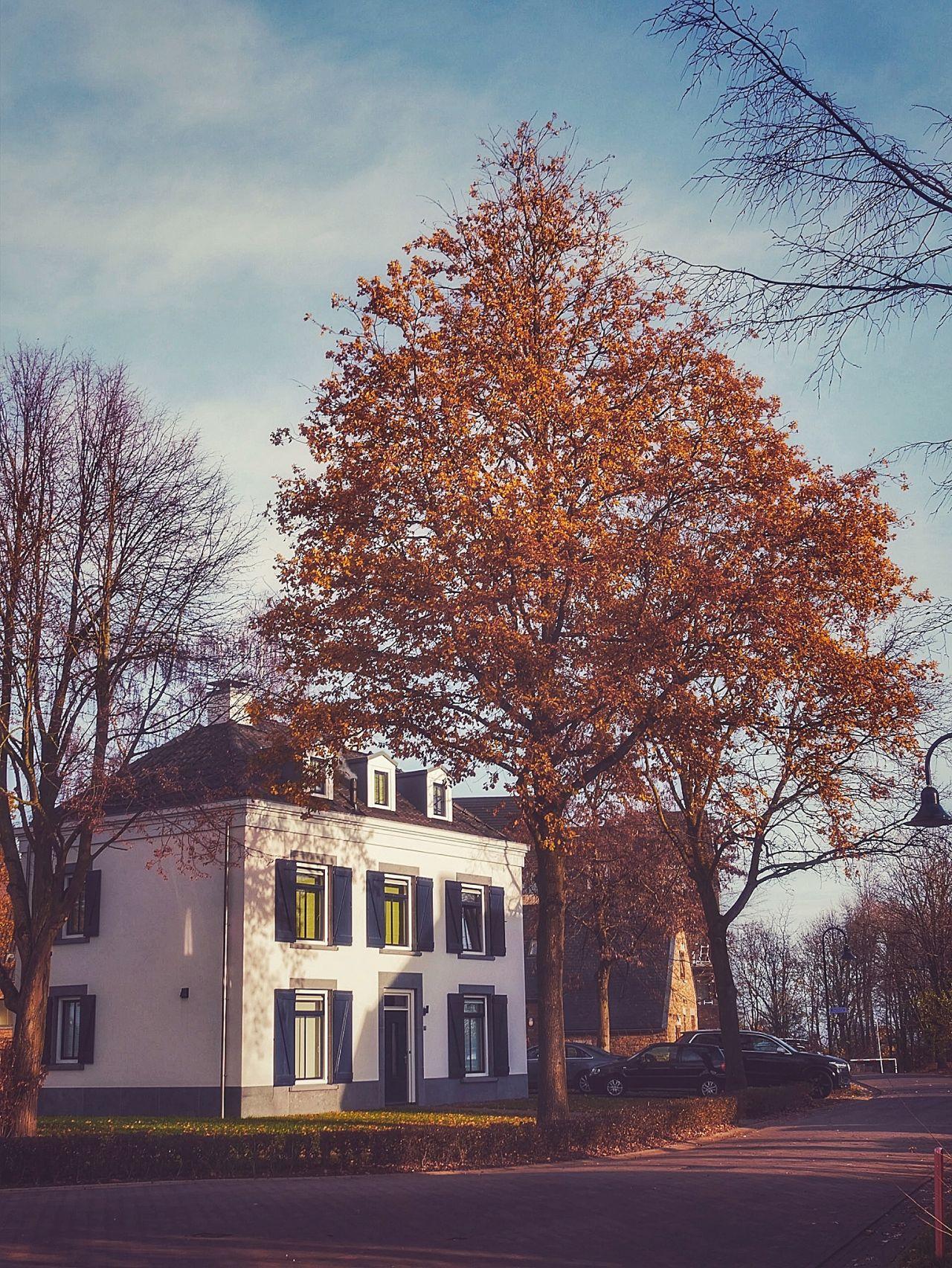 Dormio Maastricht vakantiehuisje13