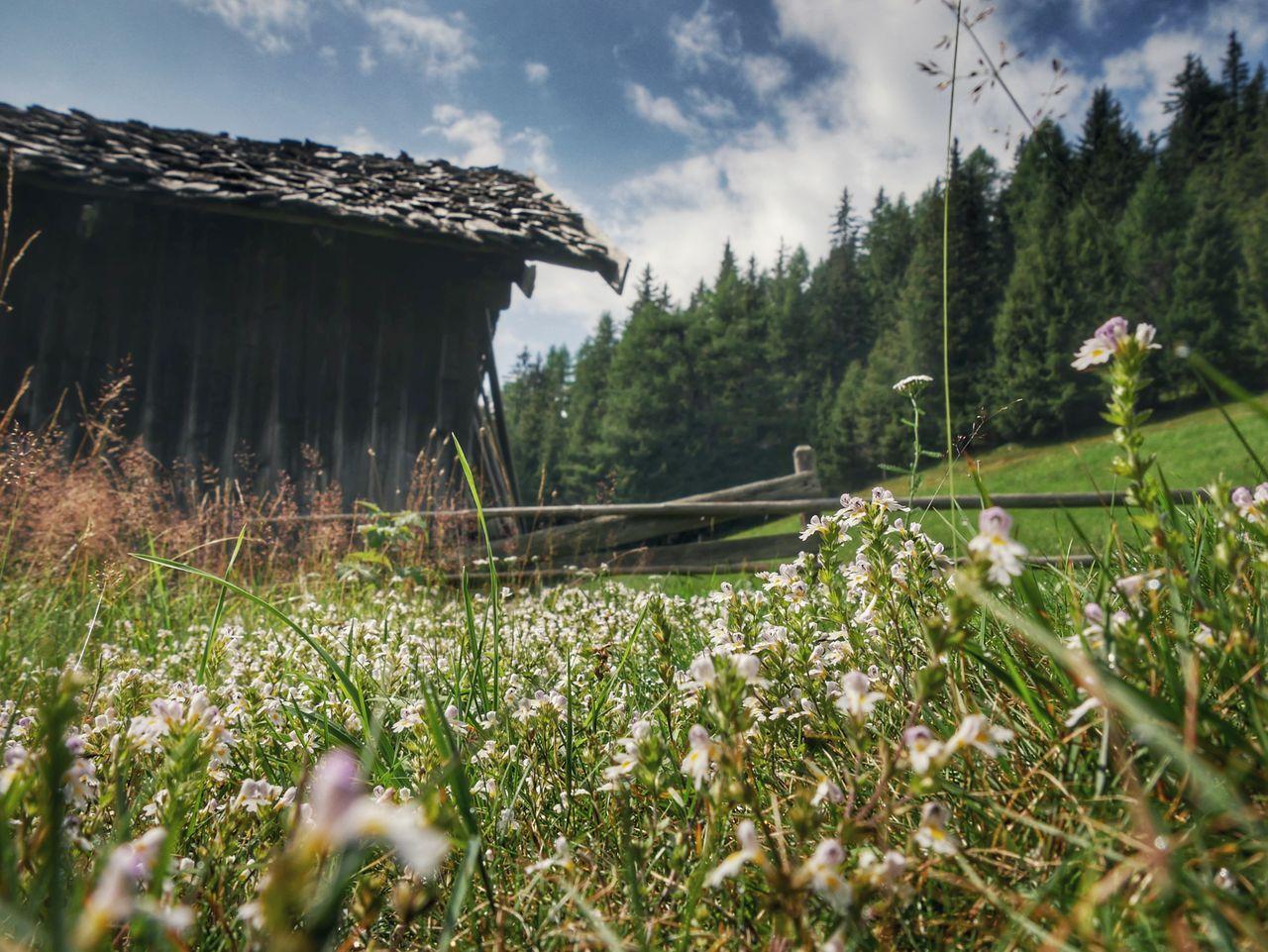 Gitschberg Jochtal Zuid Tirol almhut