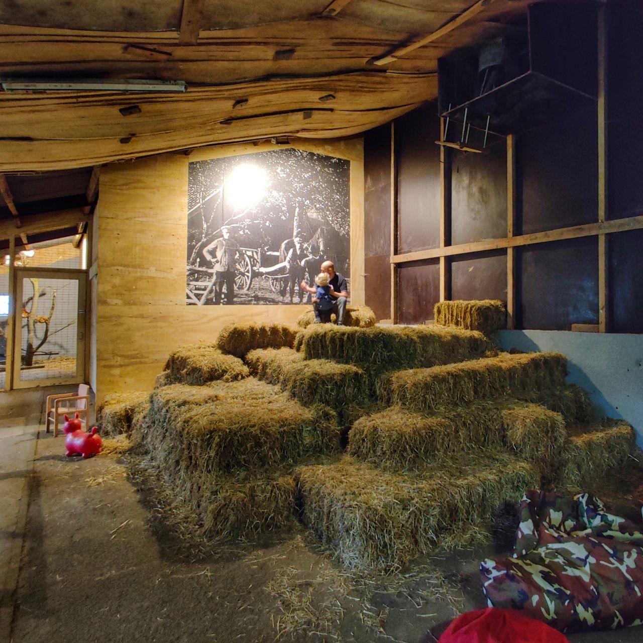 De Kleine Wildenberg Deventer hooi bioscoop