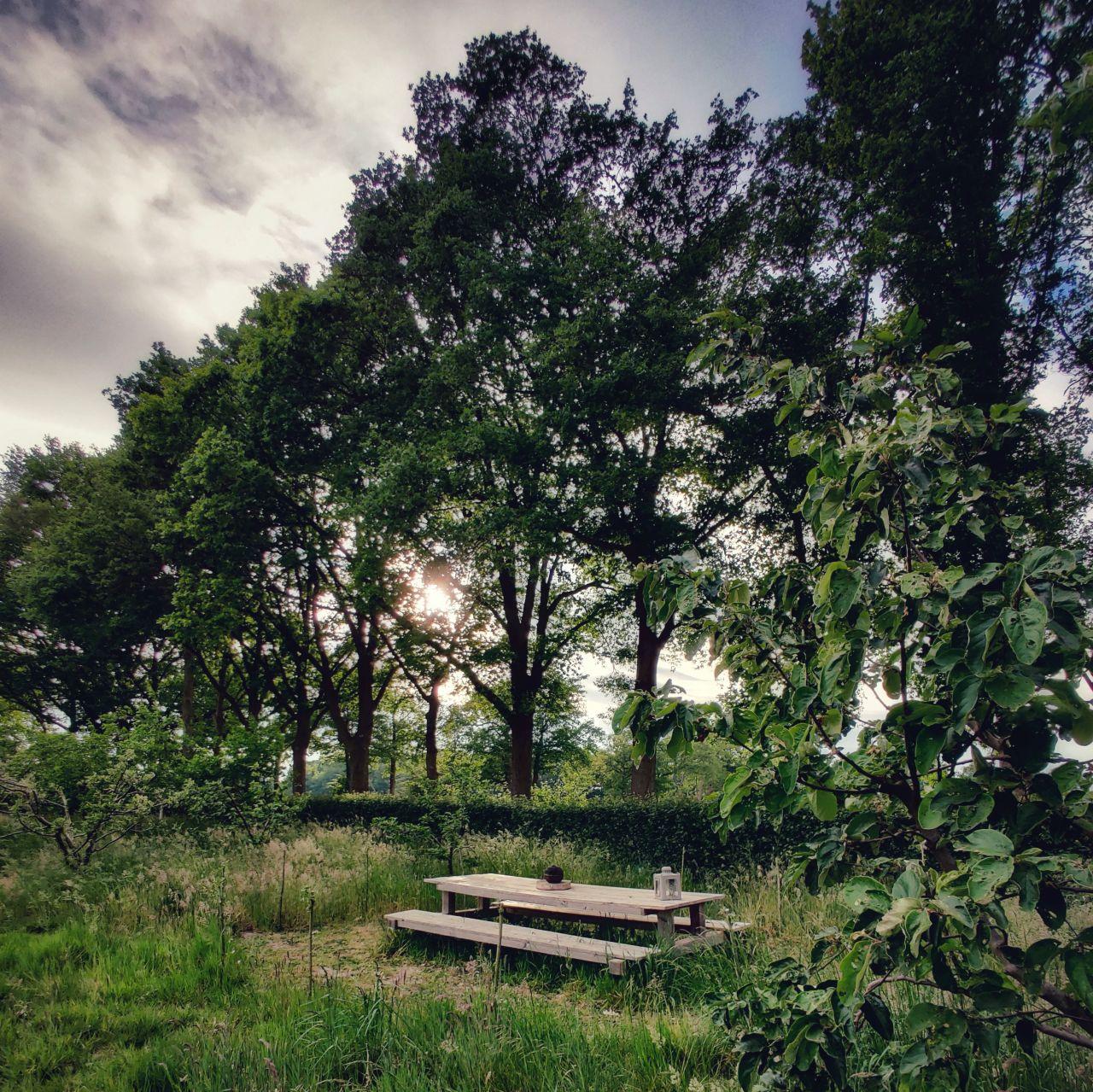De Kleine Wildenberg Deventer pickniken